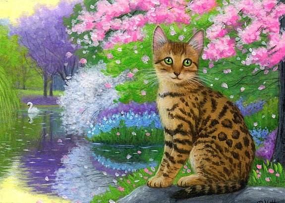 Les chats - Page 24 3e637110