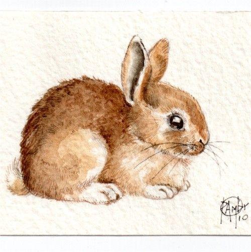 Les animaux peints à l'AQUARELLE - Page 4 79ef7710