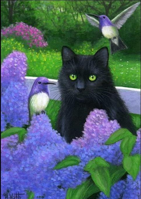 Les chats - Page 24 86015e10