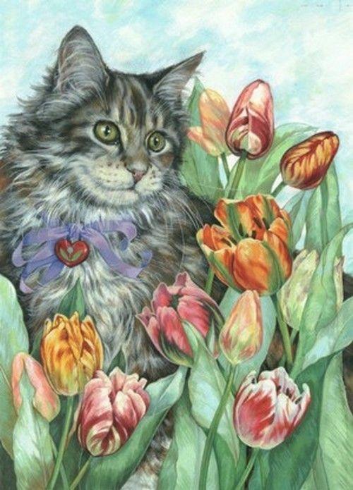 Les chats - Page 23 91e49a10