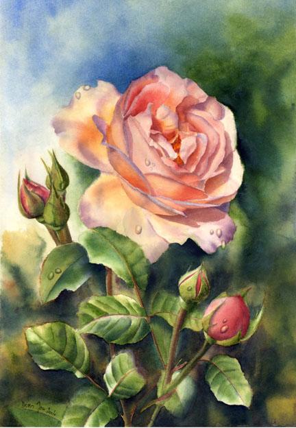 Le doux parfum des roses - Page 5 After-10