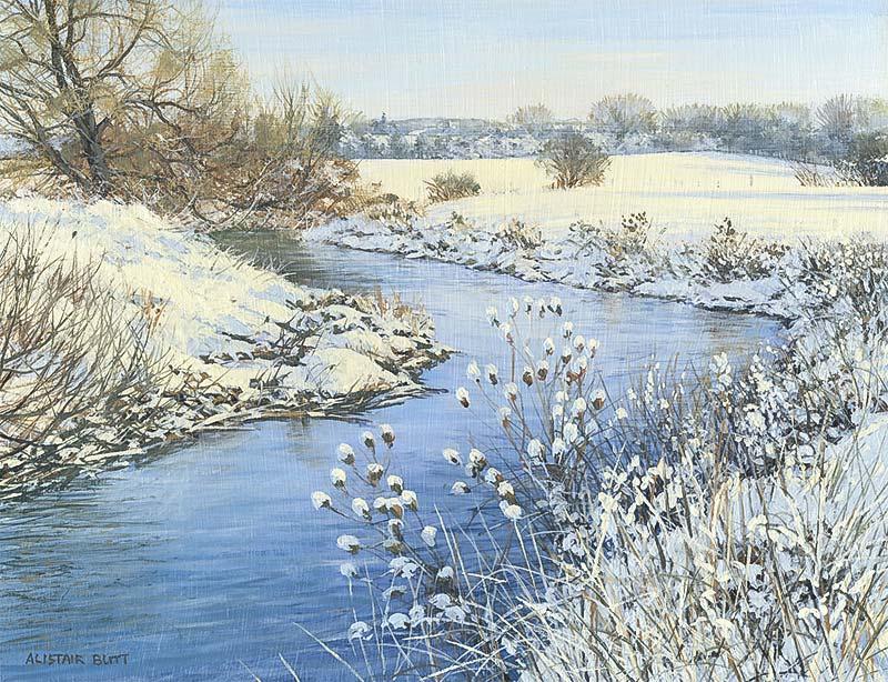 L'eau paisible des ruisseaux et petites rivières  - Page 11 Alista11