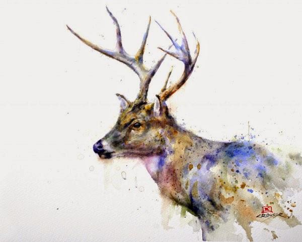 Les animaux peints à l'AQUARELLE - Page 3 Animau12