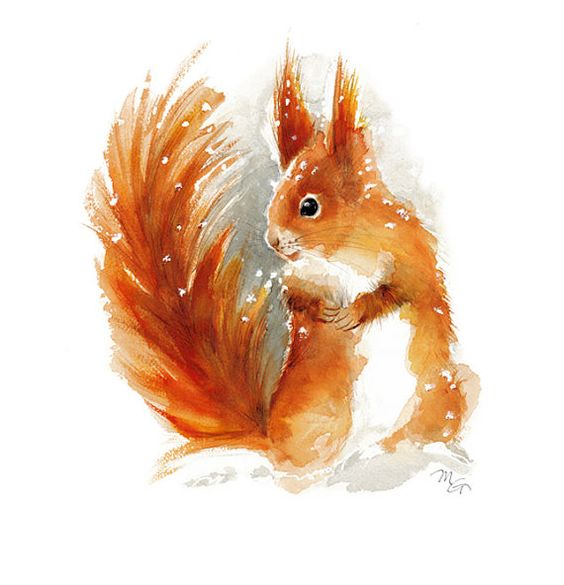 Les animaux peints à l'AQUARELLE B7d8b310