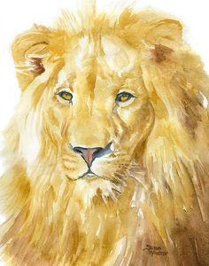 Les animaux peints à l'AQUARELLE - Page 2 D8c65010