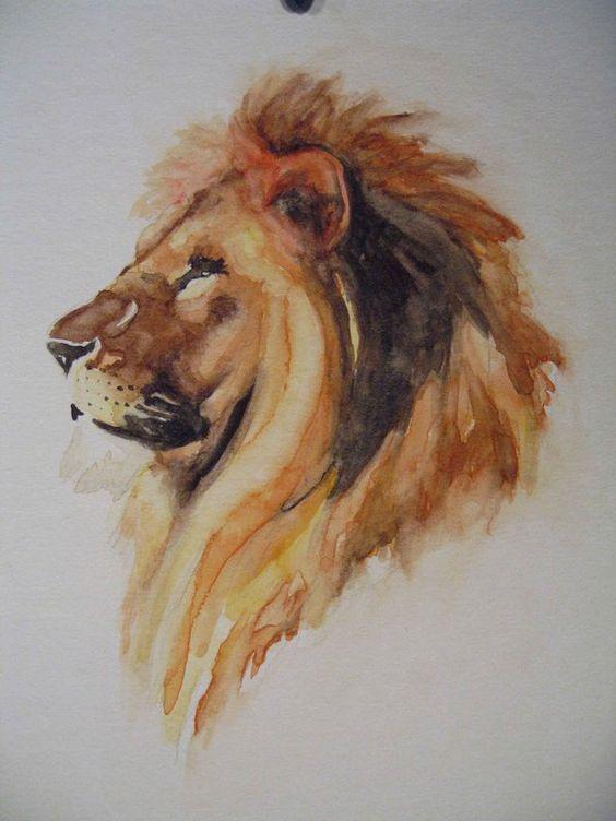 Les animaux peints à l'AQUARELLE - Page 2 E01db710
