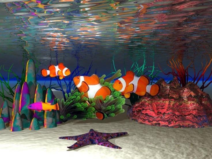 tout est multicolore - Page 27 Fish-c10