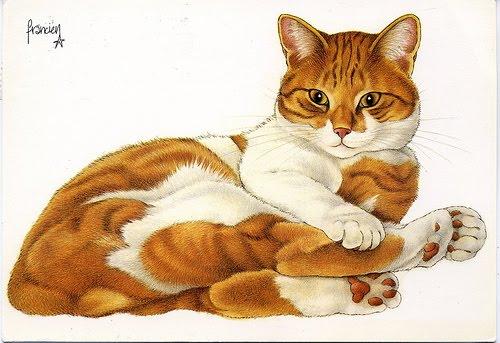 Les chats - Page 21 Franci11
