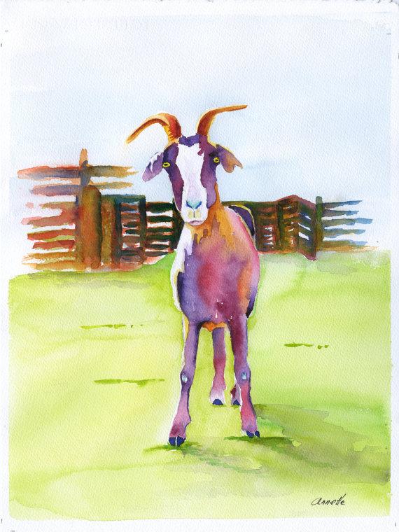 Les animaux peints à l'AQUARELLE Il_57013