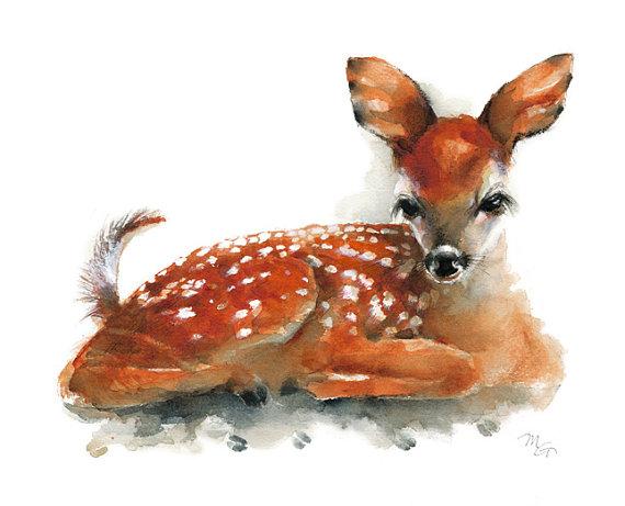 Les animaux peints à l'AQUARELLE - Page 3 Il_57018
