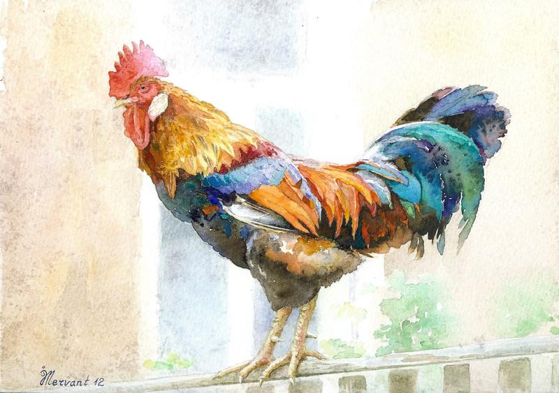 Les animaux peints à l'AQUARELLE - Page 2 Il_ful33