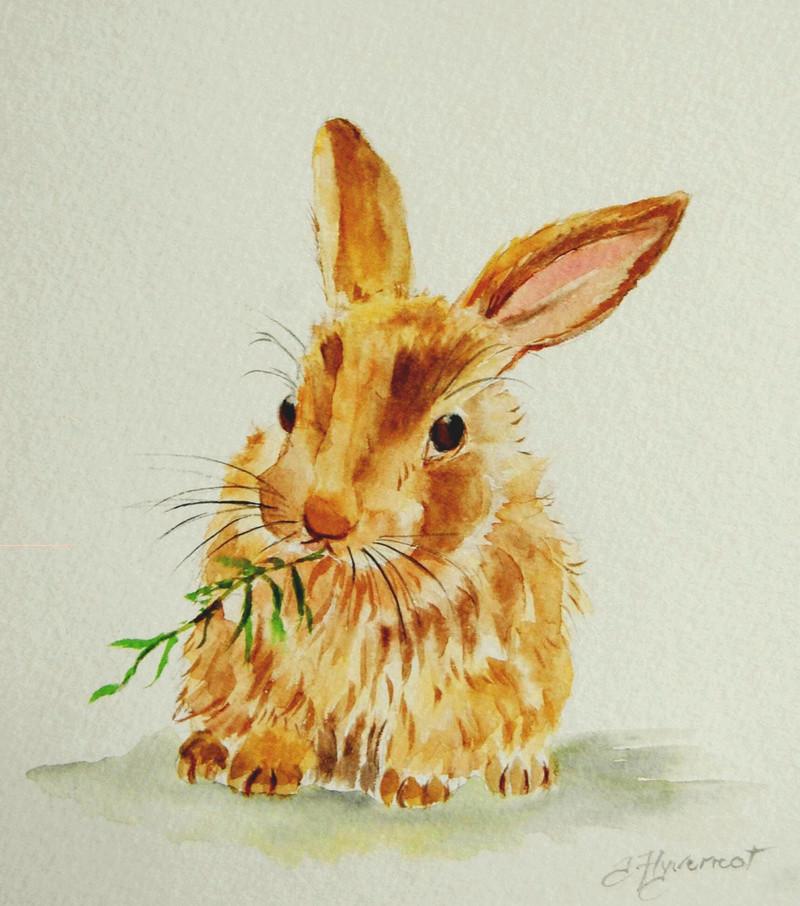 Les animaux peints à l'AQUARELLE - Page 2 Il_ful35
