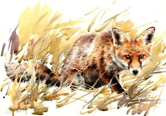 Les animaux peints à l'AQUARELLE - Page 2 Newton10