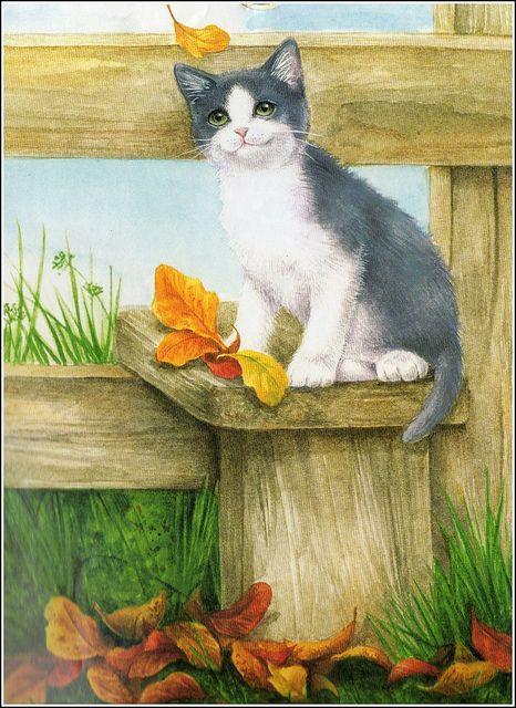 Les chats - Page 24 Petit_10