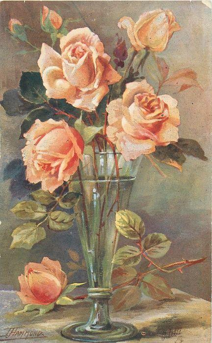 Le doux parfum des roses - Page 6 T_hamm10