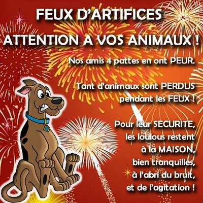 FEUX D'ARTIFICES Feux10
