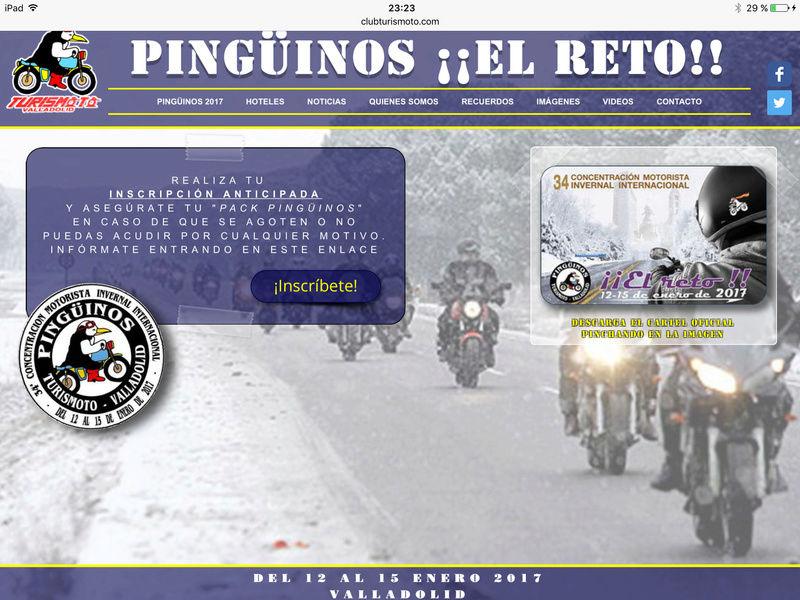 nouveau PINGUINOS Img_0614