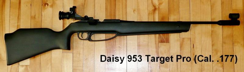 Armes à air et carabines .22lr de Picanox Daisy-10
