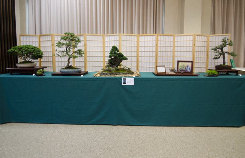Some wide angle shots of Carolina Bonsai Expo showing the full displays Small_14
