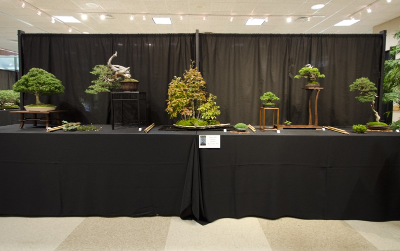 Some wide angle shots of Carolina Bonsai Expo showing the full displays Small_15