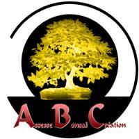 L'Assesse Bonsai Création (ABC) C'est quoi? Pictur23