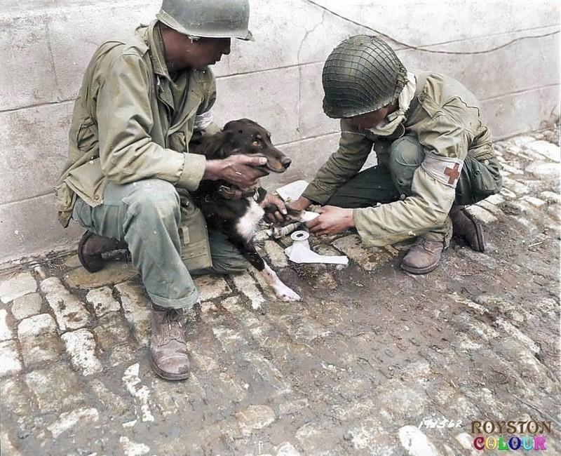 Les Images de la Seconde Guerre Mondiale - Page 17 13932810