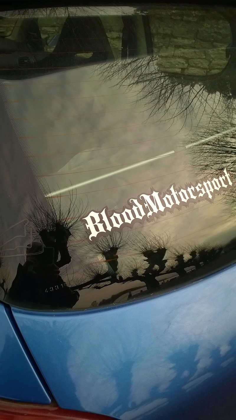 [BoOst] Peugeot 206 RCi de 2003 Blood10