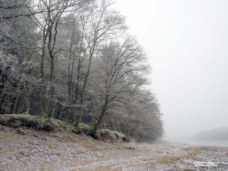 Brouillard givrant sur le Merle Brouil11