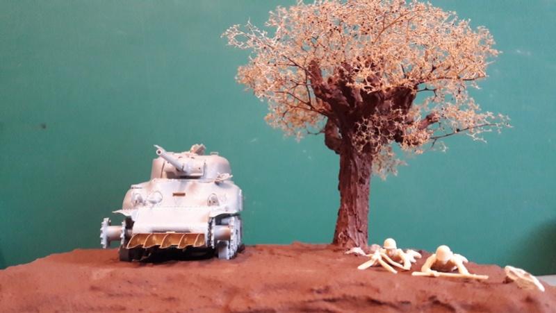 Sherman M4A1 Dragon 1/72 20170225