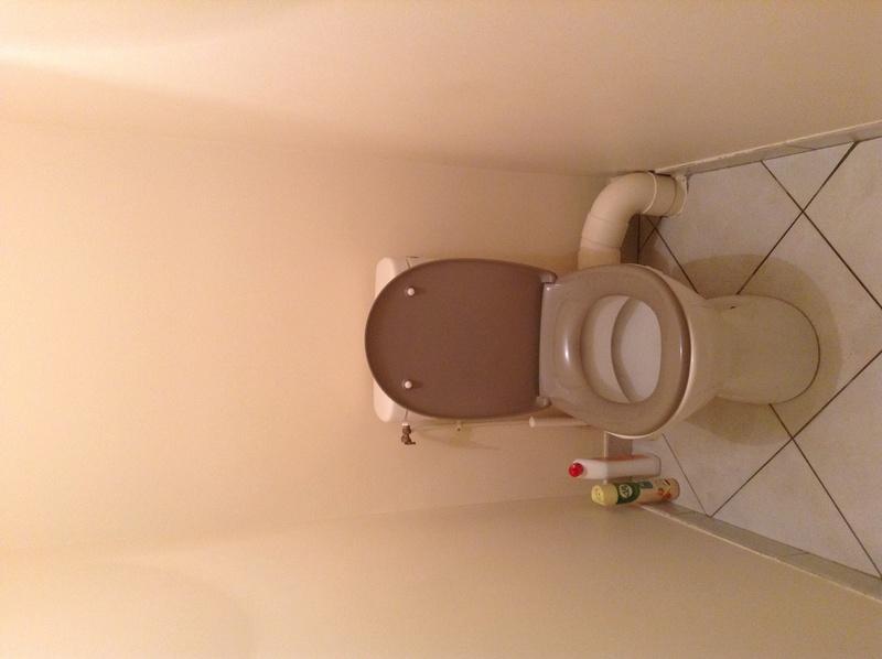 comment agrémenter mes toilettes Toilet13