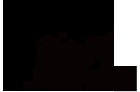 Les annonces de plumes de Phénix Plumes10