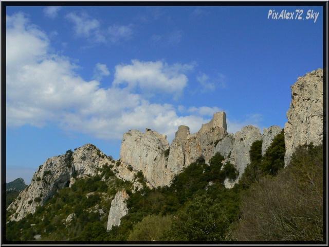 photos faune et flore  P1220311
