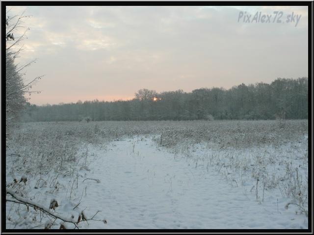 photos faune et flore  P1240410