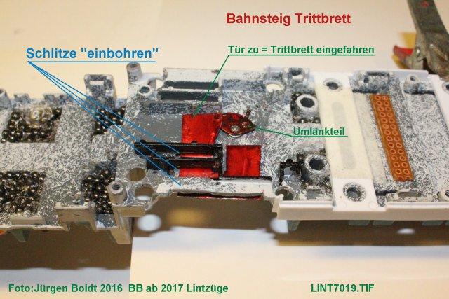 Bauberichte ab 2017 - Seite 2 Lint7017