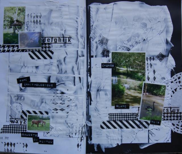 Galerie de Clarisse - Page 3 Summer18