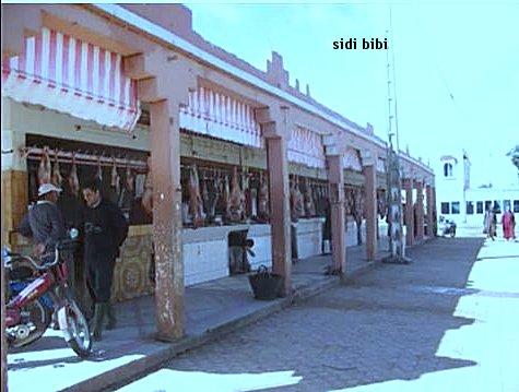Sidi Bibi Ville en photos et texte Sidibi16