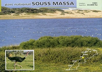 Parc national Souss massa Draa Souss_11