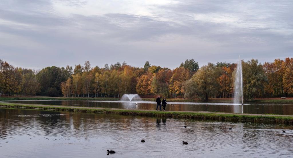 L'automne au parc de la glissoire a Avion ( pas de calais ) Imgp8711