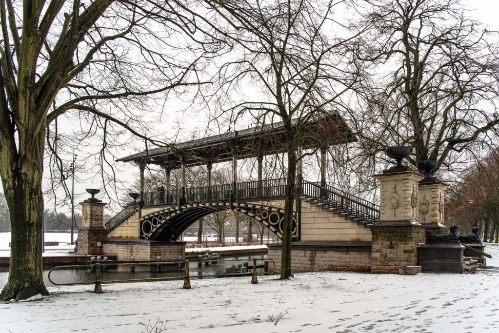 Lille sous la neige  Imgp9210