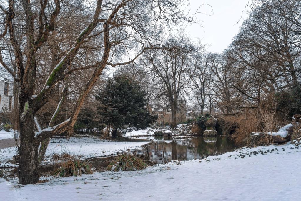Lille sous la neige  Imgp9212