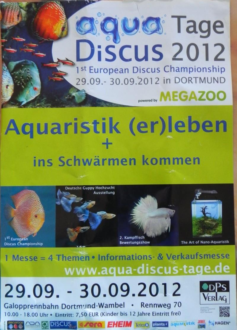 1er concours discus européen - Dortmund (DE) - 29-30/09 Dscn9815