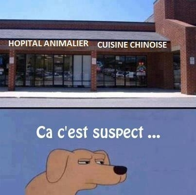 humour - Page 6 20151012