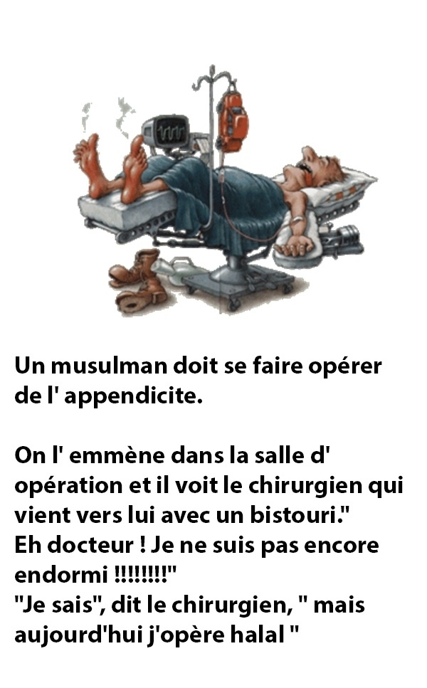 humour - Page 37 20160416