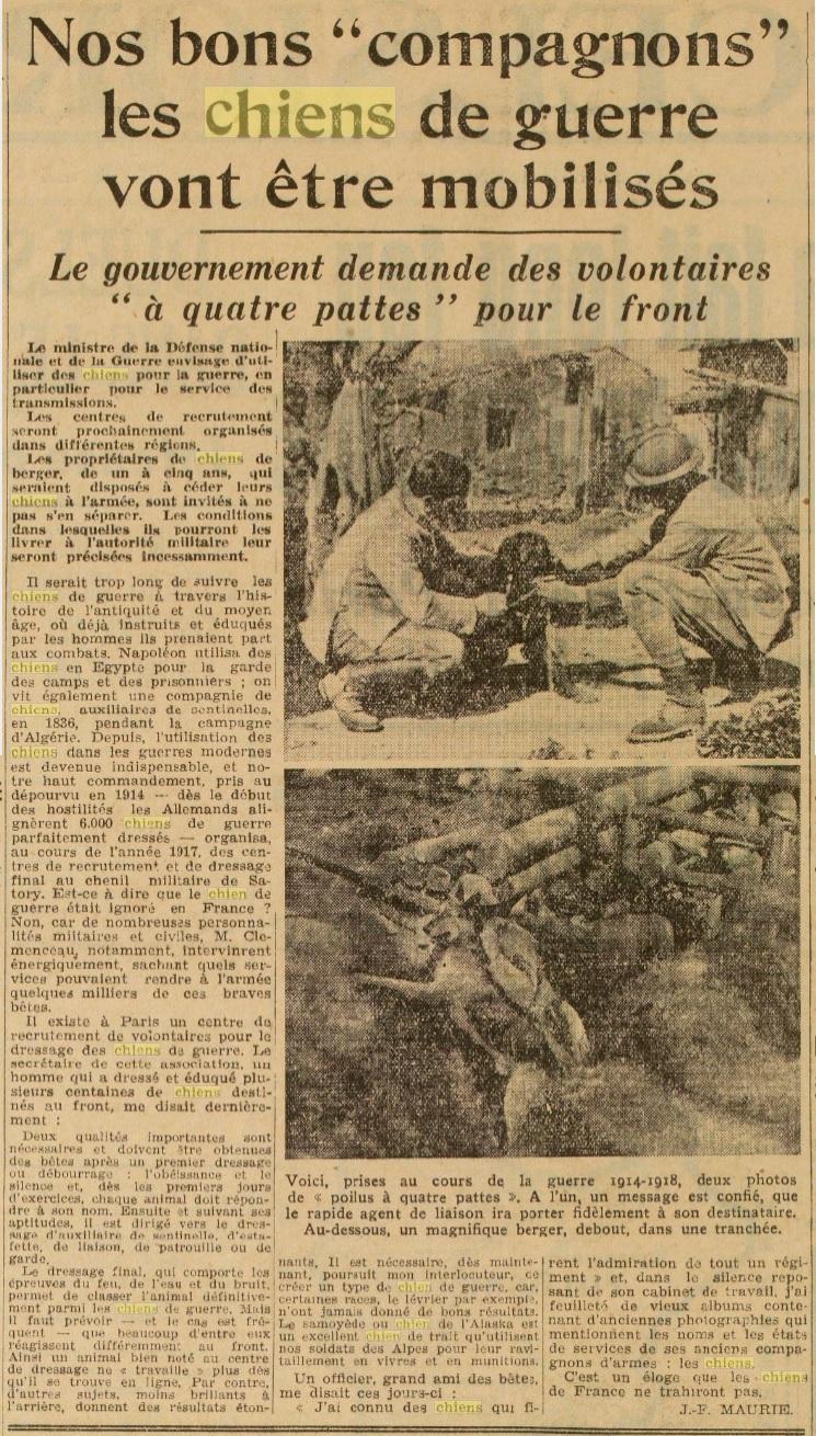 Les chiens dans l'armée française - Page 2 19391014