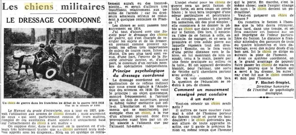 Les chiens dans l'armée française - Page 2 19391020