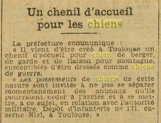 Les chiens dans l'armée française - Page 2 19391116
