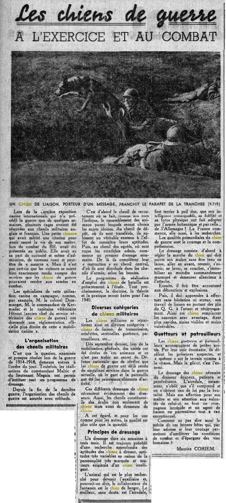 Les chiens dans l'armée française - Page 2 19391215