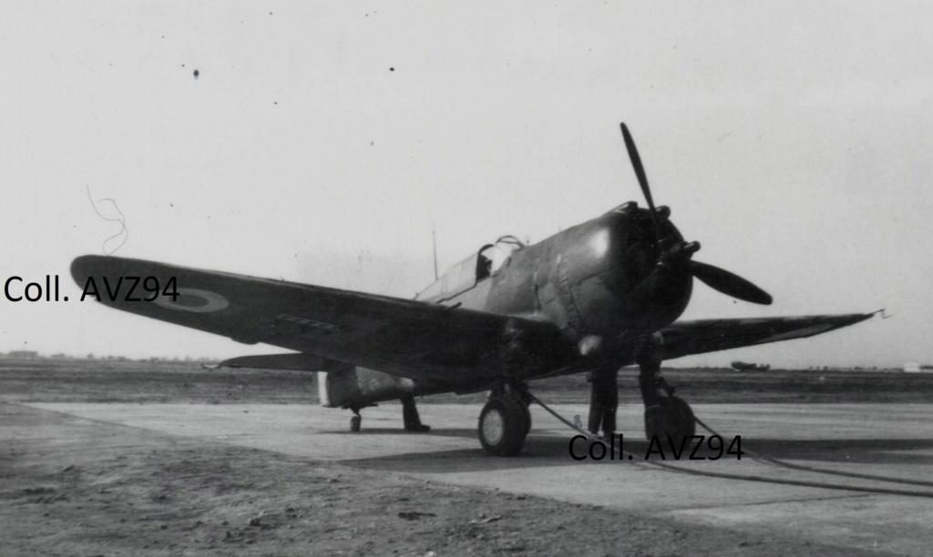 Curtiss H75 - Oran la Sénia - Mers el-Kébir 2020-043