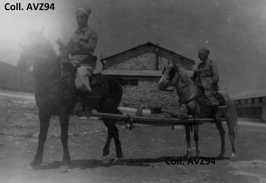 Brancardage avec l'aide de chevaux 2021-118