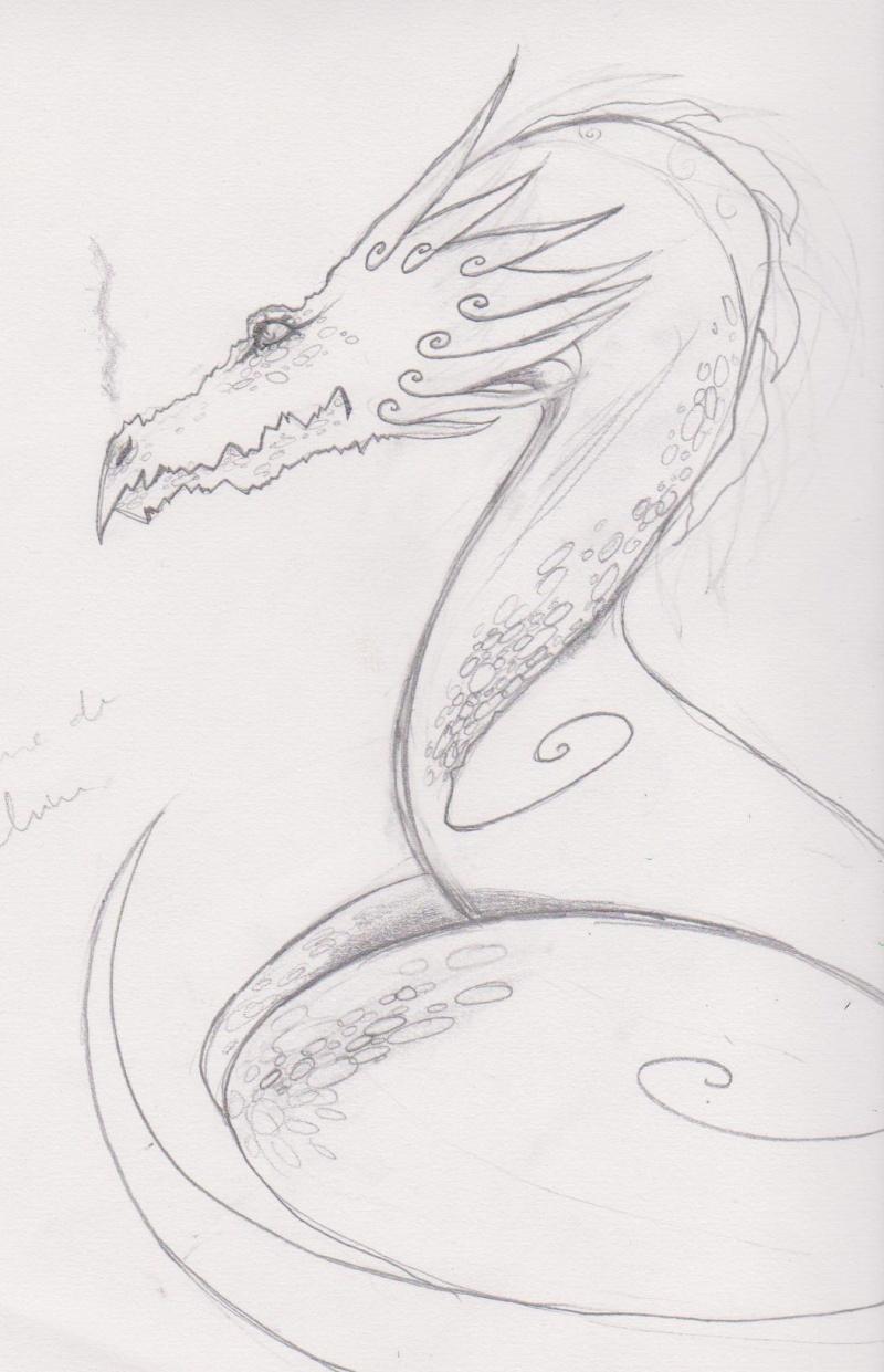 Dragon [noony4] Yop_0410